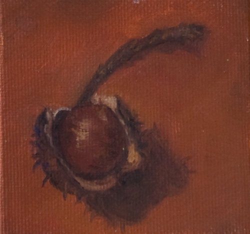 French-hickory-nut-albumB.jpg