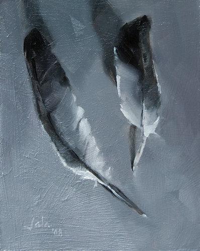 Gray-feathers-albumB.jpg