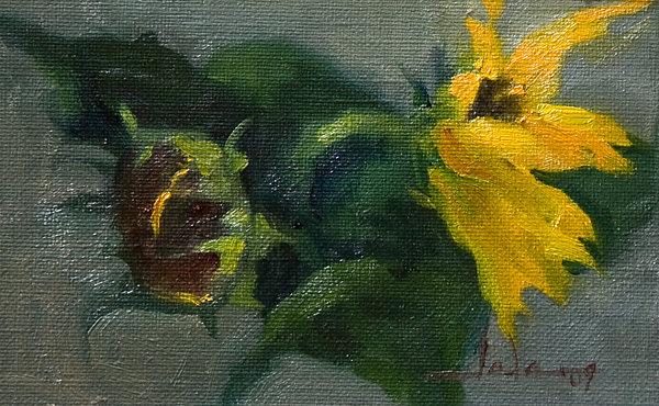 Sunflowers-2-albumB.jpg