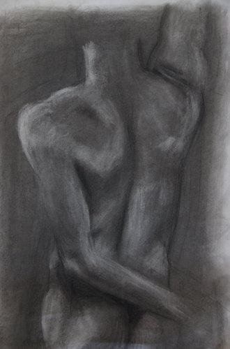 Male-torso-study-albumC.jpg